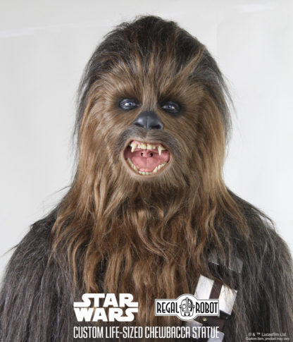 Chewbacca's mask from Star Wars
